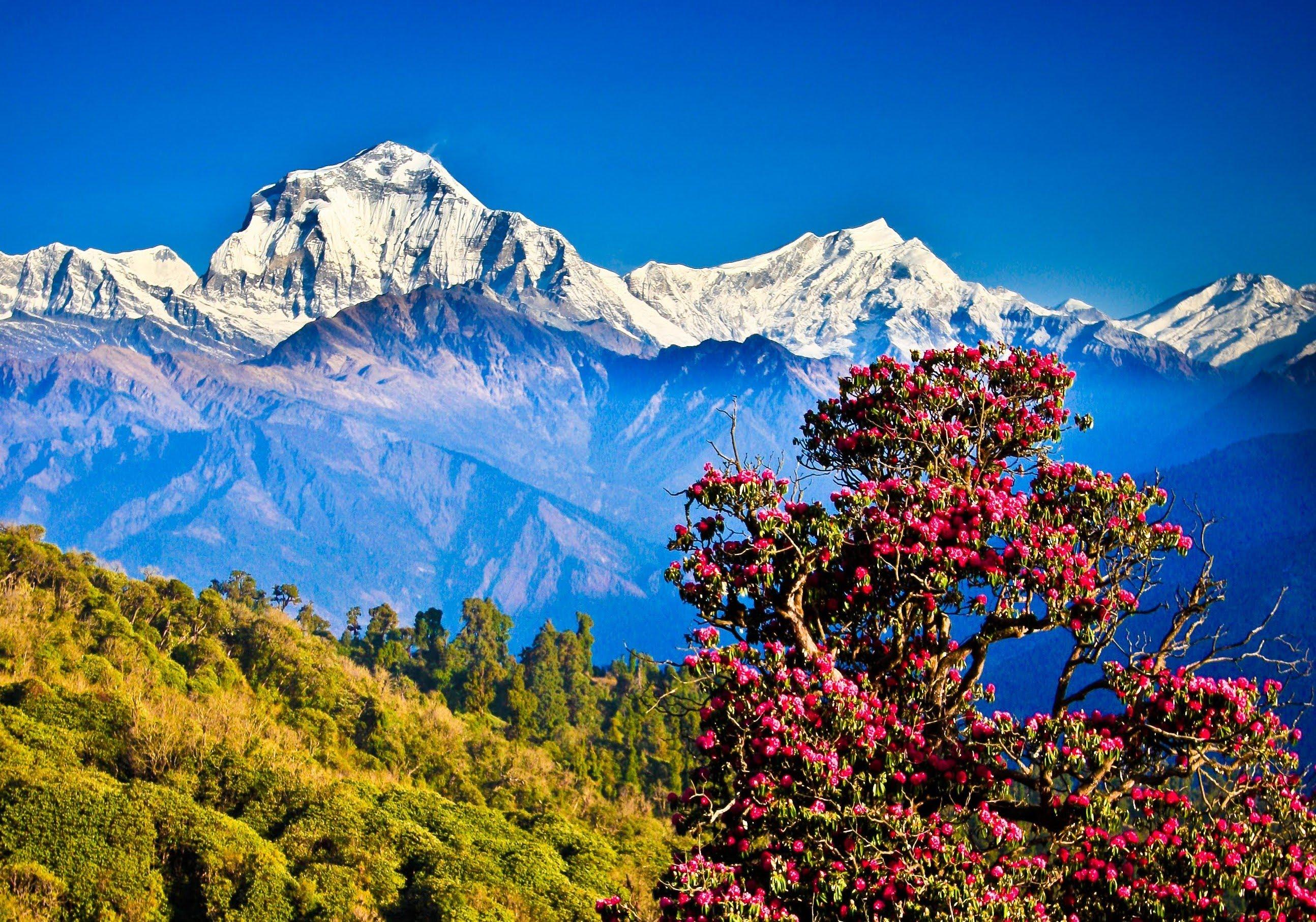 India y Nepal 09 Mayo - SALIDA GARANTIZADA